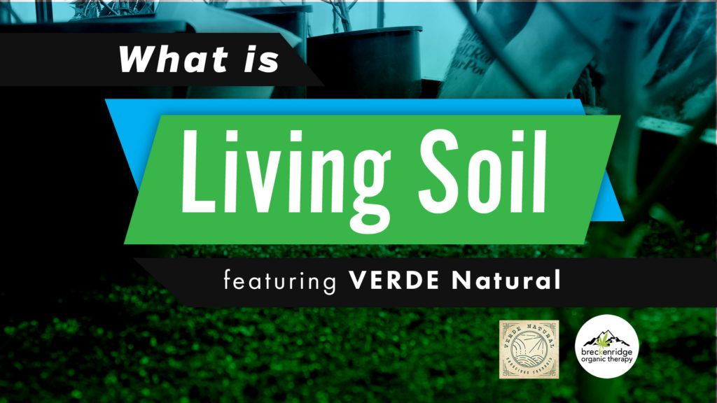 breckorganictherapy-living-soil-Verde-graphic